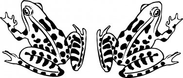 FROG FROGS VINYL DECAL STICKERS...PRICE IS FOR 2