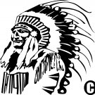 INDIAN CHIEF NATIVE AMERICAN CASINO OWNER VINYL DECAL STICKER