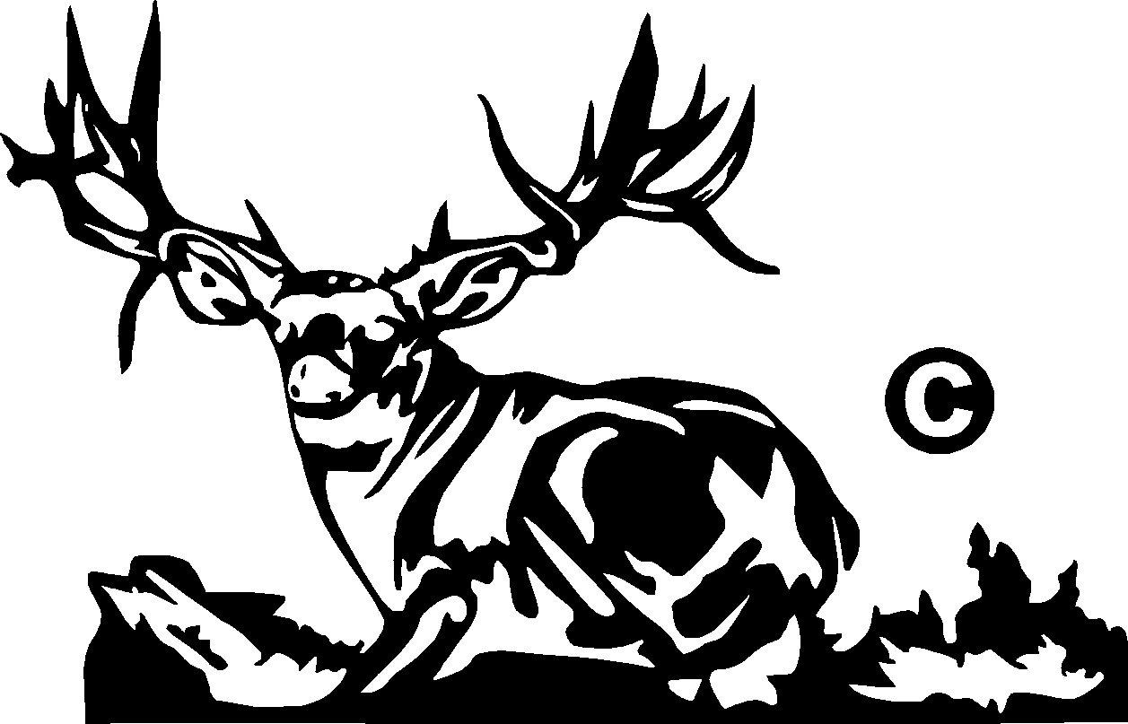 Mule deer vinyl decal sticker 7 wide for Deer mural decal