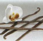Vanilla Oatmeal Spice Soap