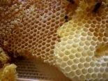 Honey Almond Oatmeal Soap Bar