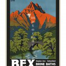 Bex Brine Baths - Vintage Swiss Travel Poster [4 sizes, matte+glossy avail]