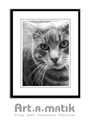 Smokey Portrait - Artamatik Framed Print