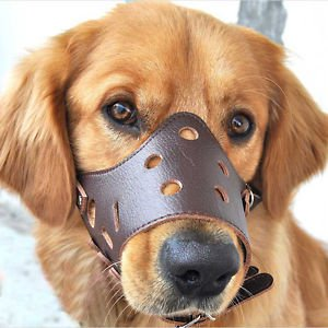 Pratical Anti-Bite Leather Mouth Mesh Muzzle Basket Cover Adjustable For Pet Dog