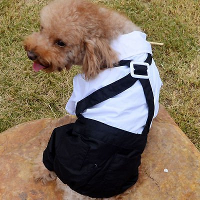 Cute Bear Bib Pants Puppy Dog Hoodie Warm Coat Outwear Jumpsuit Apparel Clothes