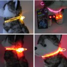Flashing Light LED Light Fresh Dog Night Safety Pet Adjustable Cat Collar Leash