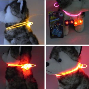 Flashing Light LED Light Fresh Dog Night Safety Pet Adjustable Cat Collar Leash