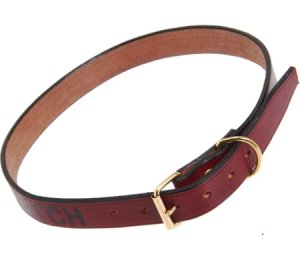 "$112 Saddlers Union Extra Large ""BITCH"" embossed dog collar"