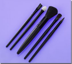 5 PC Brush Set.