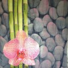 BAMBOO FLOWER & STONE 180 x 200 cm POLYESTER Bathroom Use SHOWER CURTAIN SET