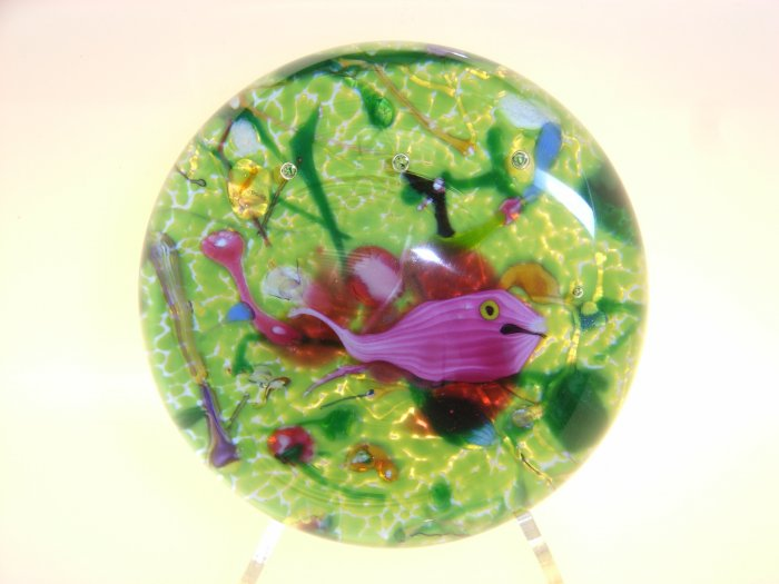 Signed Andrew  Holmes  Traditional Lampwork Fish Paperweight