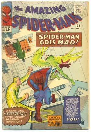 Amazing Spider-Man #24 Spidey Goes Mad! HTF 1965 Ditko Classic