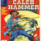 Marvel Premiere #54 Caleb Hammer Tony DeZuniga Western Art