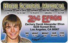 ZAC EFRON DRIVERS LICENSE