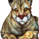 "6"" printed airbrushed design cougar vinyl decal sticker for any smooth surface."
