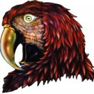 "6"" printed airbrushed design parrot vinyl decal sticker for any smooth surface."