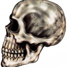 "6"" printed airbrushed  design skull side view vinyl decal sticker for any smooth surface."