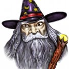 "6"" printed airbrushed  design wizard vinyl decal sticker for any smooth surface."