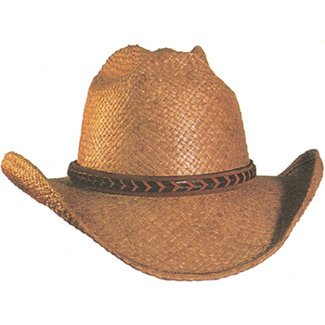 Shady Brady Hat Brown Raffia Straw Arrow Western Braid Medium