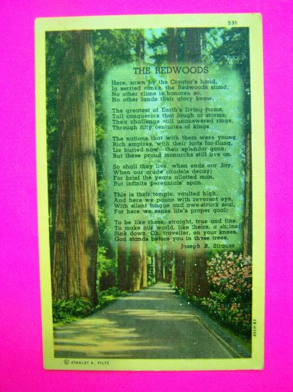 Vintage Linen Postcard The Redwoods Poem by Joseph Strauss
