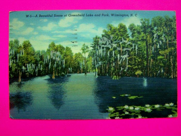 40s Postcard Linen Scene Greenfield Lake Park Wilmington North Carolina USA Old Colortone  Post Card