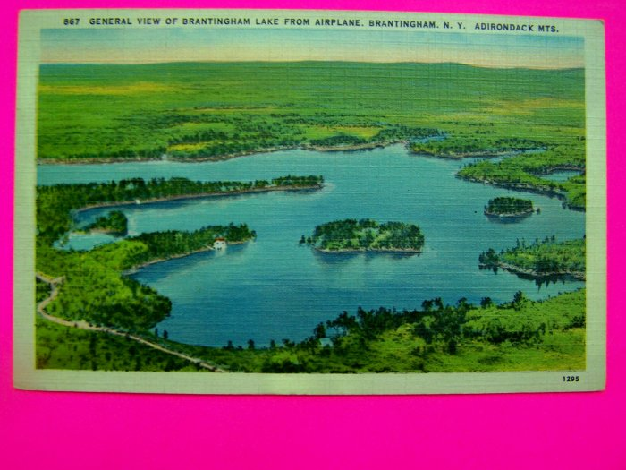 40s Antique Postcard Linen Scene Lake Brantingham New York Adirondack Mountains