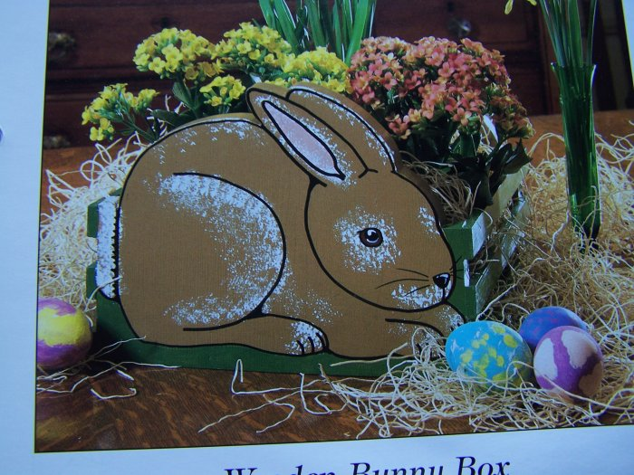 Wooden Easter Bunny Box Pattern Wood Rabbit USA 50 Cent Shipping Specials