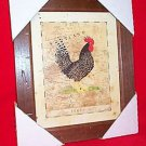 "12 1/2""x10 1/2"" ROOSTER PICTURE - THE SCOT'S GREY MIP"