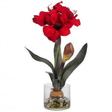 Amaryllis with Round Vase 4827