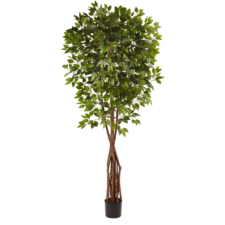 7.5� Super Deluxe Ficus Tree 5453