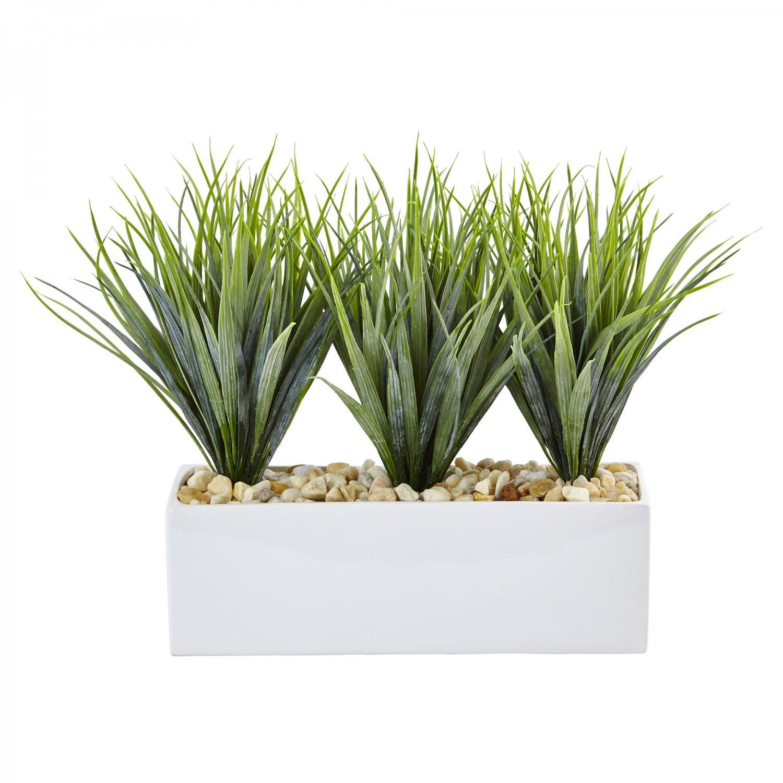 Vanilla Grass in Rectangular Planter  6915