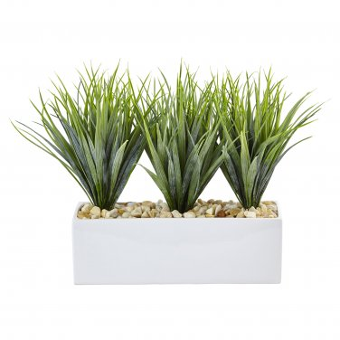 Vanilla Grass in Rectangular Planter  6915