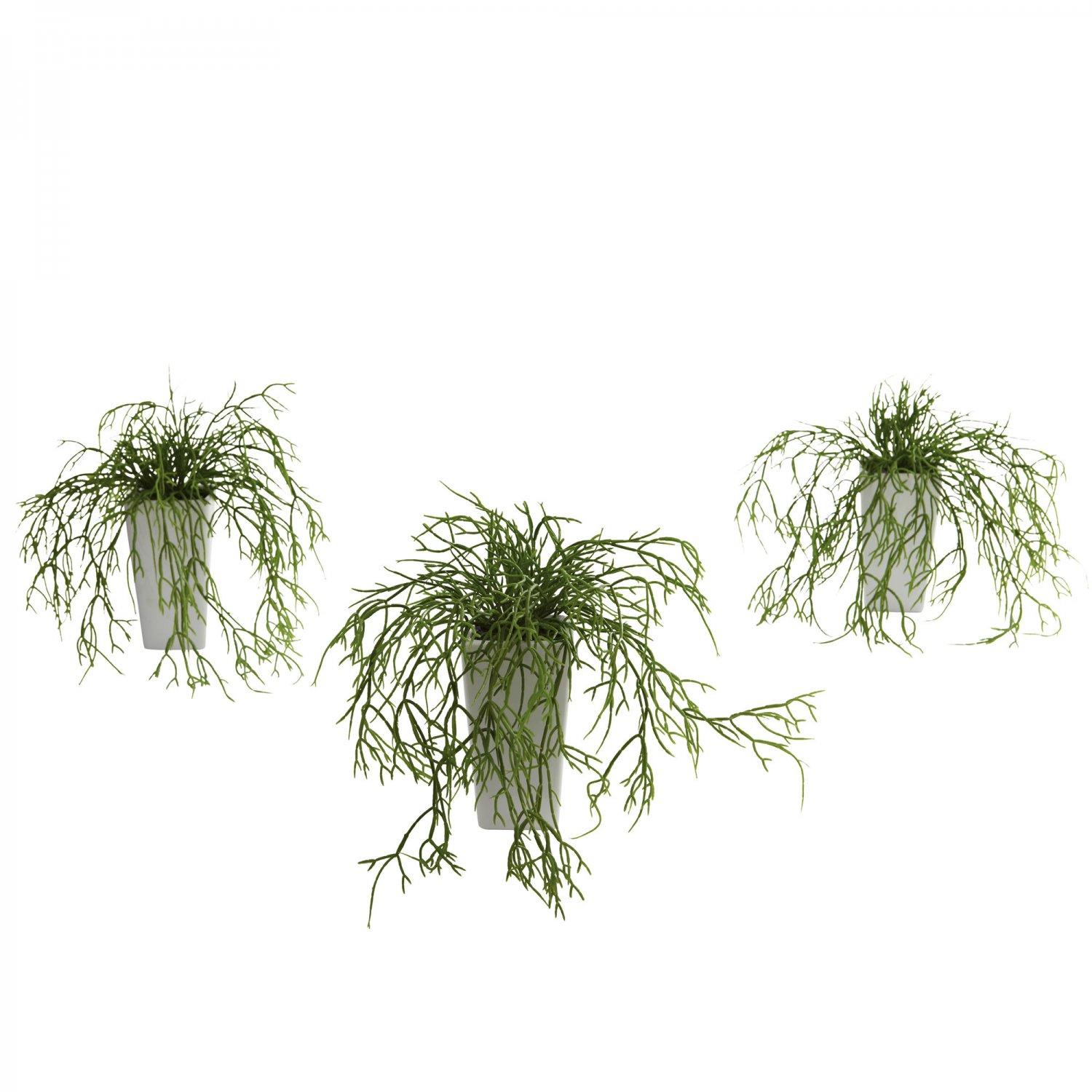 Wild Grass w/White Vase (Set of 3) 4973-S3