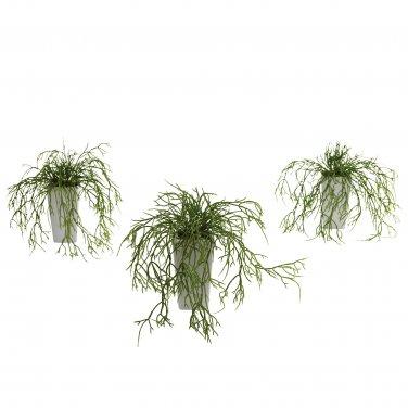 Wild Grass w/White Vase (Set of 3) 4973-S3