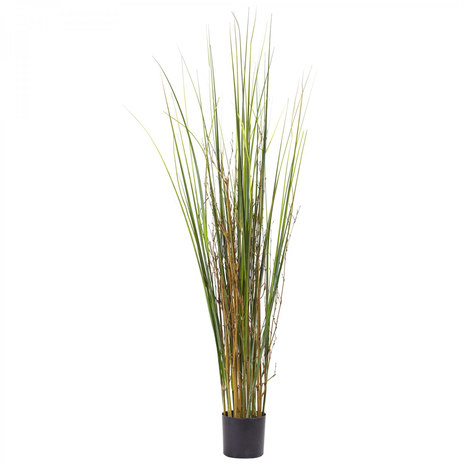 4' Grass & Bamboo Plant 6829