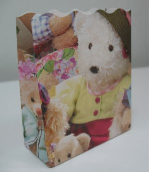 10 Open Top Small Bags - All Dressed Up Teddy Bear Pattern