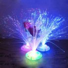 Color Changing Fiber Optic Nightlight Lamp Colorful Light