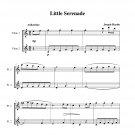 Haydn - Little Serenade