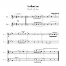 Haydn - Andantino