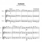 Haydn - Andante from Surprise Symphony