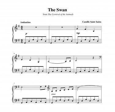 Saint-Saëns - The Swan (longer)
