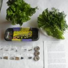 Salad Grow Kit / Start Growing ORGANIC Today / Romaine, Arugula and many more