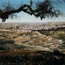 Panoramic color photo from late 19th century of the old city of jerusalem in palestine #9