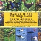 Wading Birds of North America