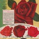 "1953 GERMAIN'S ""CHRYSLER IMPERIAL ROSE"" Advertisement"