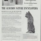 "1965 The Audubon Nature Encyclopedia Ad ""Exciting Reading"""