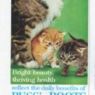 """1961 Puss 'n Boots Cat Food Ad """"Bright beauty"""""""