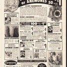 "1953 Germain's Ad ""Giant Ranunculus"""