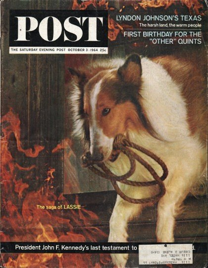 """1964 Saturday Evening Post Cover Page """"Lassie"""" ~ October 3, 1964"""