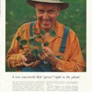 """1958 American Cyanamid Company Ad """"A new insecticide"""""""
